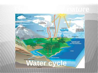 The balance of nature Water cycle