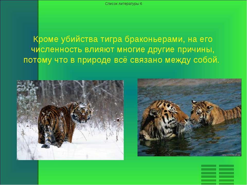 Кроме убийства тигра браконьерами, на его численность влияют многие другие пр...