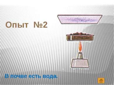 Опыт №5 В почве содержатся соли.