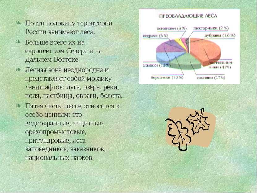 Почти половину территории России занимают леса. Больше всего их на европейско...