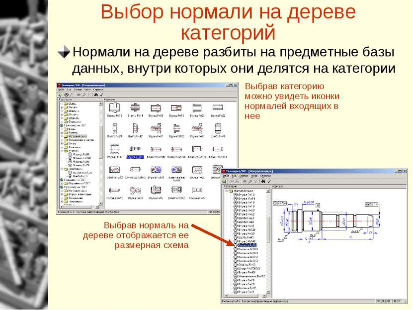 Выбор нормали на дереве категорий Выбрав категорию можно увидеть иконки норма...