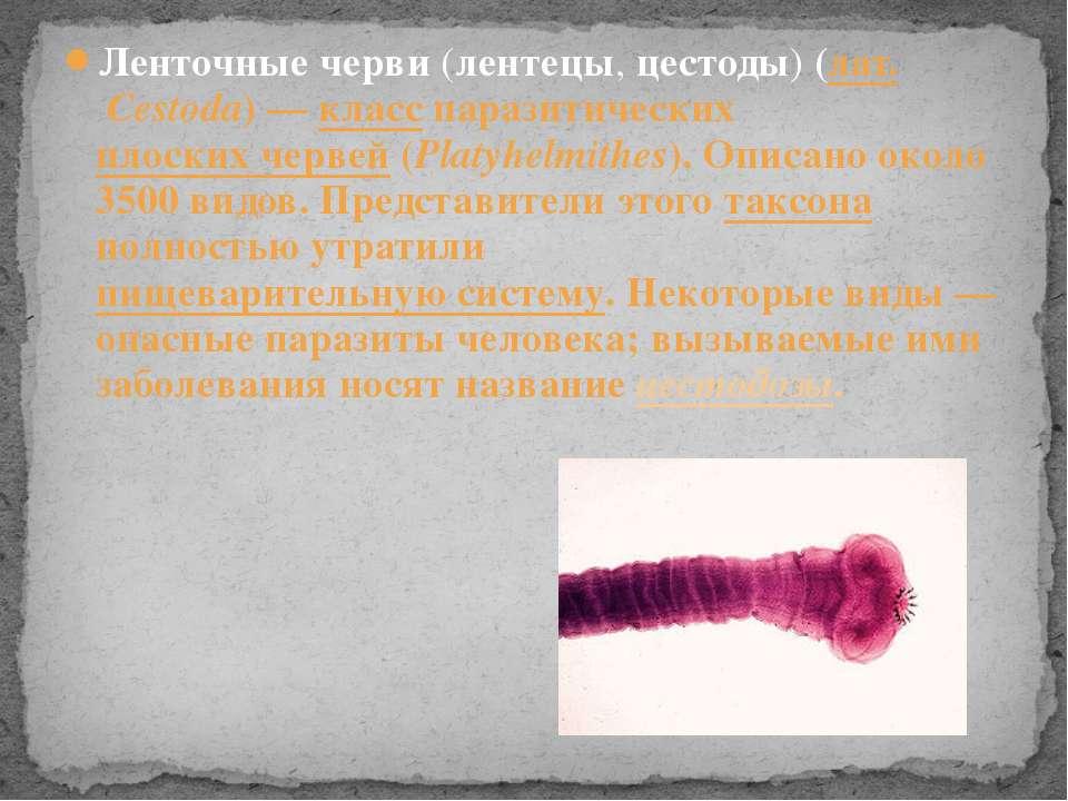 Ленточные черви (лентецы, цестоды) (лат.Cestoda)— класс паразитических плос...