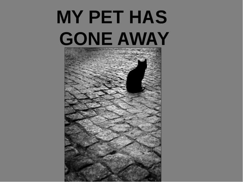 MY PET HAS GONE AWAY
