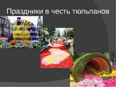 Праздники в честь тюльпанов