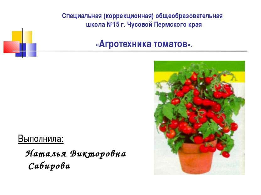 Специальная (коррекционная) общеобразовательная школа №15 г. Чусовой Пермског...