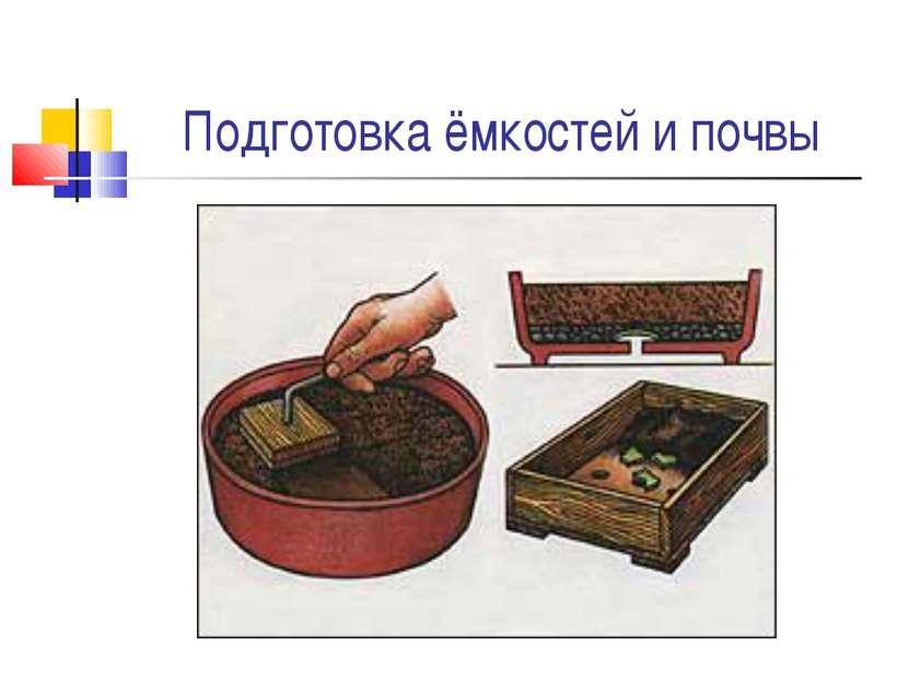 Подготовка ёмкостей и почвы