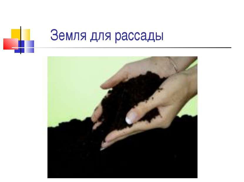 Земля для рассады