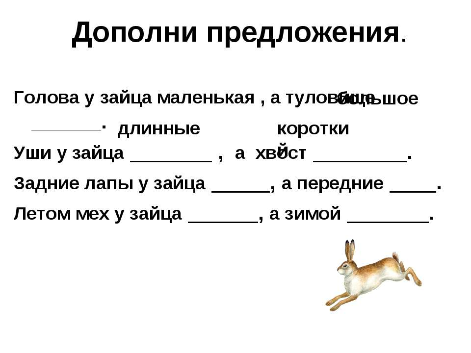 Дополни предложения. Голова у зайца маленькая , а туловище ________. Уши у за...