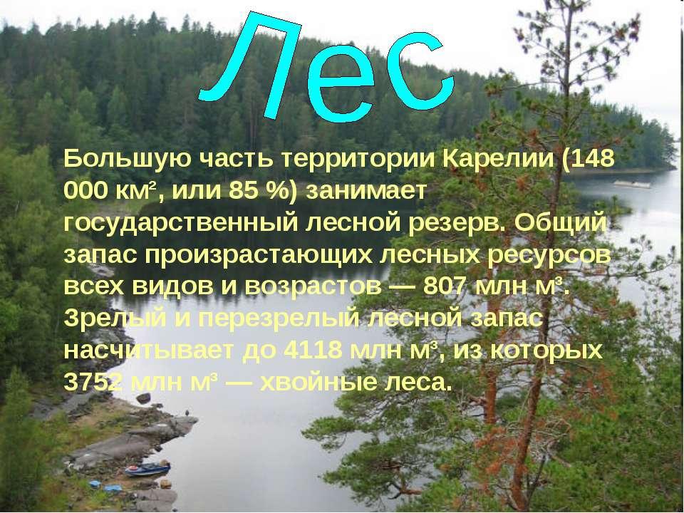 Большую часть территории Карелии (148 000 км², или 85%) занимает государстве...