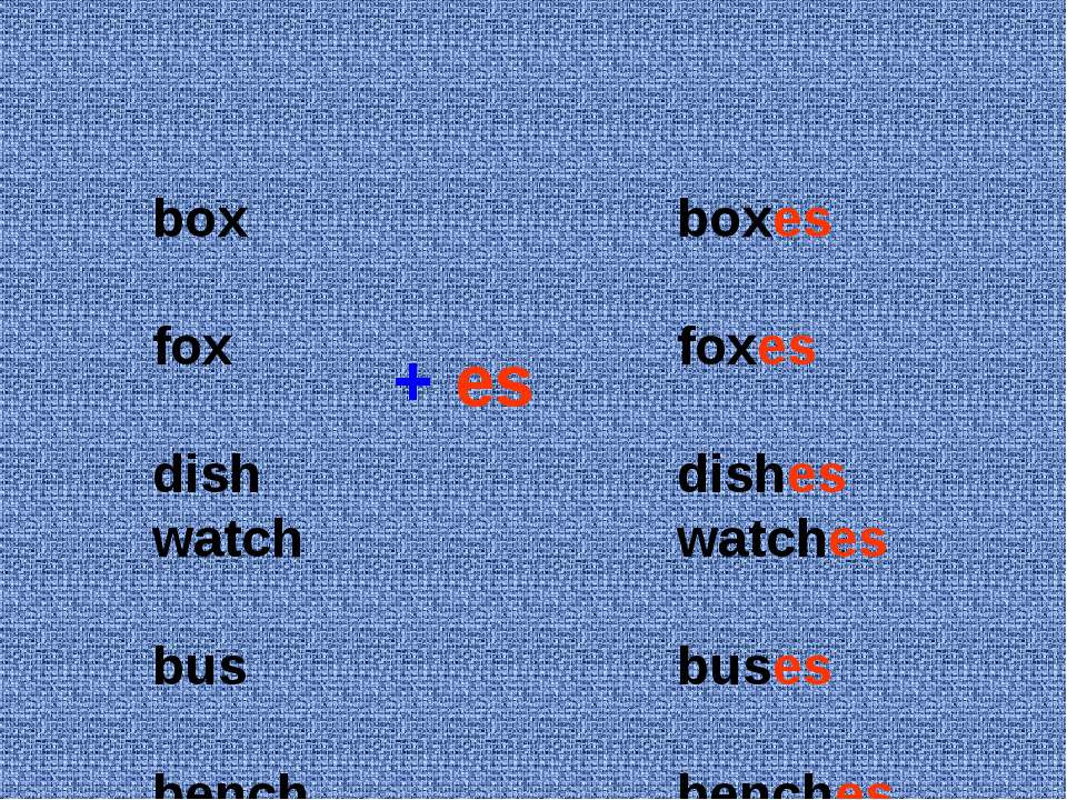 box fox dish watch bus bench boxes foxes dishes watches buses benches + es