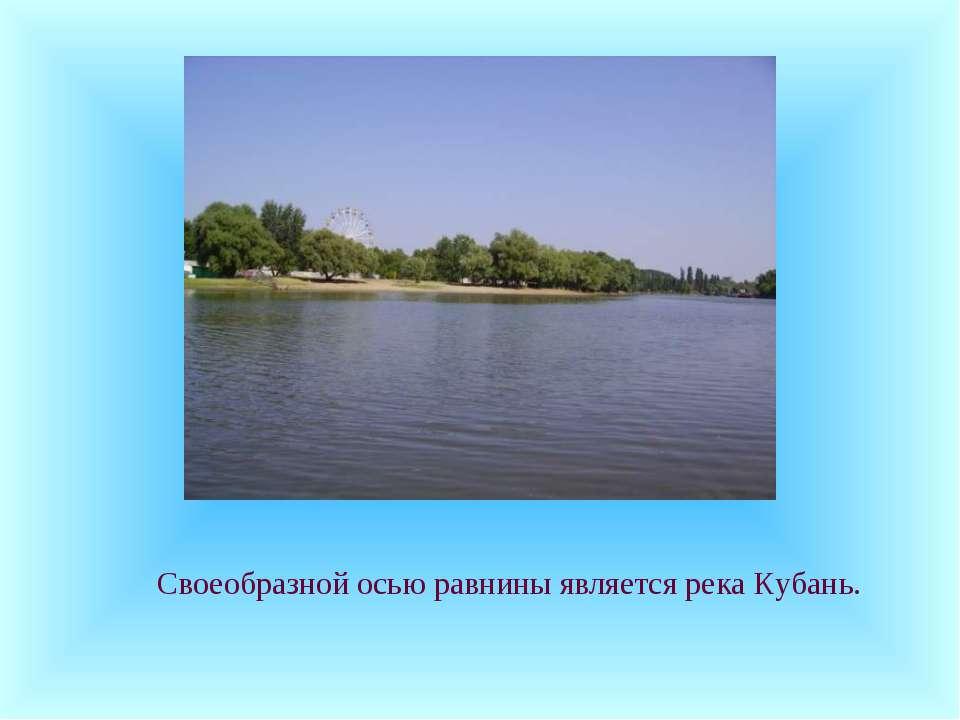 Своеобразной осью равнины является река Кубань.