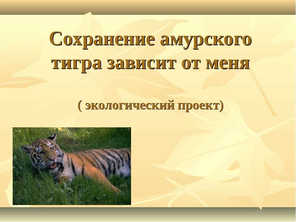 Сохранение амурского тигра зависит от меня ( экологический проект)