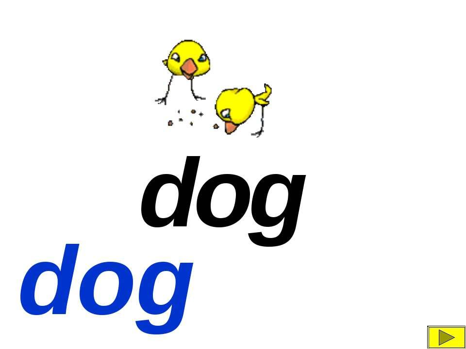 d g o dog