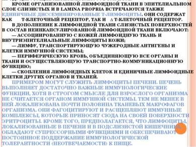 ОСНОВНАЯ МАССА ЛИМФОЦИТОВ ПЕЙЕРОВОЙ БЛЯШКИ ПРИХОДИТСЯ НА В-КЛЕТОЧНЫЙ ФОЛЛИКУЛ...