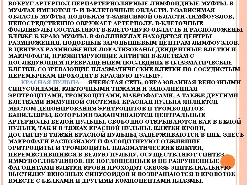 СЕЛЕЗЕНКА — КРУПНЫЙ ЛИМФОИДНЫЙ ОРГАН, ОТЛИЧАЮЩИЙСЯ ОТ ЛИМФОУЗЛОВ НАЛИЧИЕМ БОЛ...
