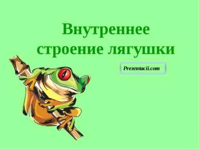 Внутреннее строение лягушки Внутреннее строение лягушки