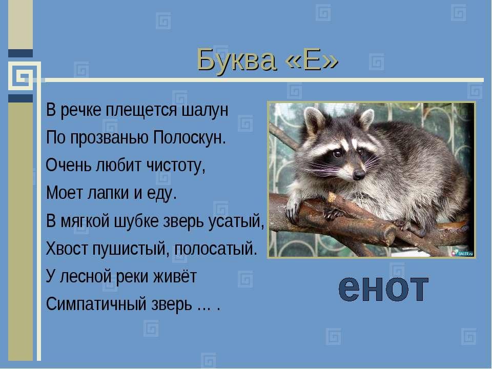 Буква «Е» В речке плещется шалун По прозванью Полоскун. Очень любит чистоту, ...