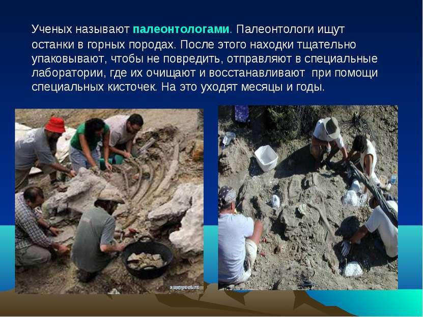 Ученых называют палеонтологами. Палеонтологи ищут останки в горных породах. П...