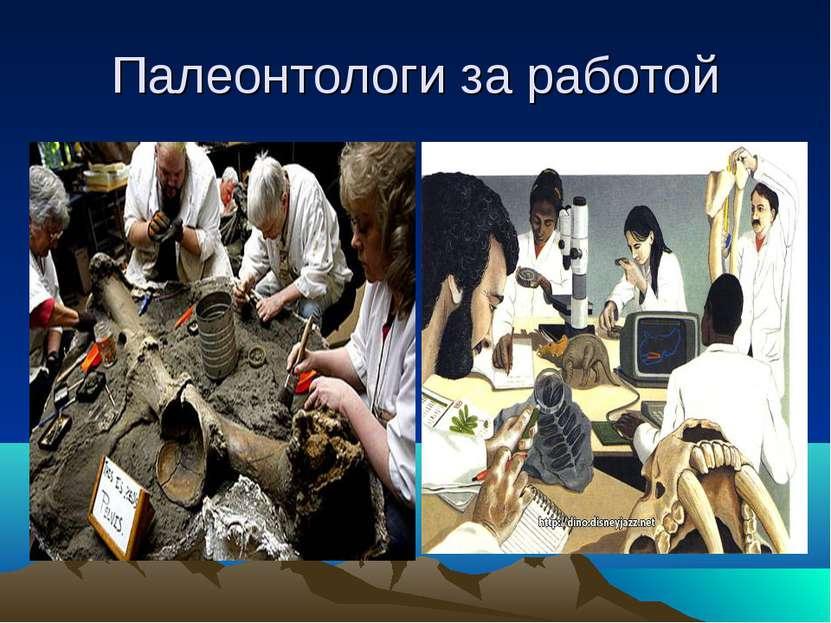 Палеонтологи за работой