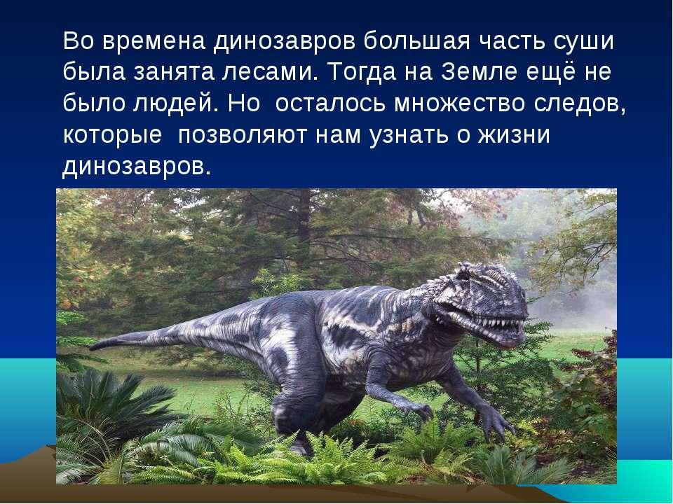 Во времена динозавров большая часть суши была занята лесами. Тогда на Земле е...