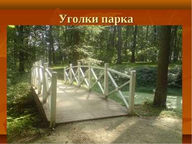 Уголки парка