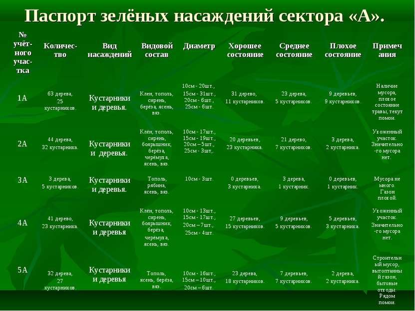 Паспорт зелёных насаждений сектора «А». № учёт-ного учас-тка Количес-тво Вид ...