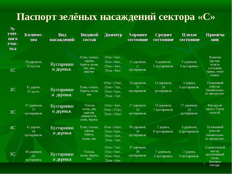 Паспорт зелёных насаждений сектора «С» № учёт-ного учас-тка Количес-тво Вид н...