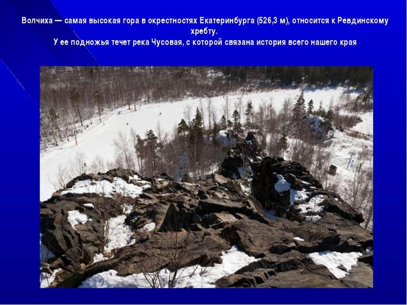 Волчиха — самая высокая гора в окрестностях Екатеринбурга (526,3 м), относитс...