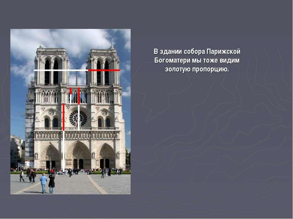 В здании собора Парижской Богоматери мы тоже видим золотую пропорцию.