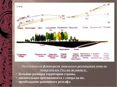 Важнейшими факторами зонального размещения почв по поверхности России являютс...