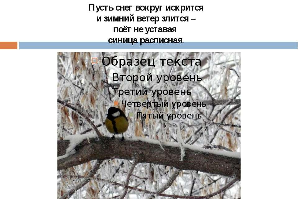 Пусть снег вокруг искрится и зимний ветер злится – поёт не уставая синица рас...