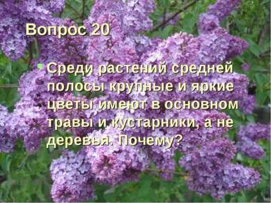 Вопрос 20 Среди растений средней полосы крупные и яркие цветы имеют в основно...