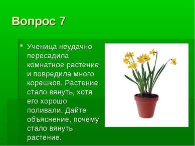 Вопрос 7 Ученица неудачно пересадила комнатное растение и повредила много кор...