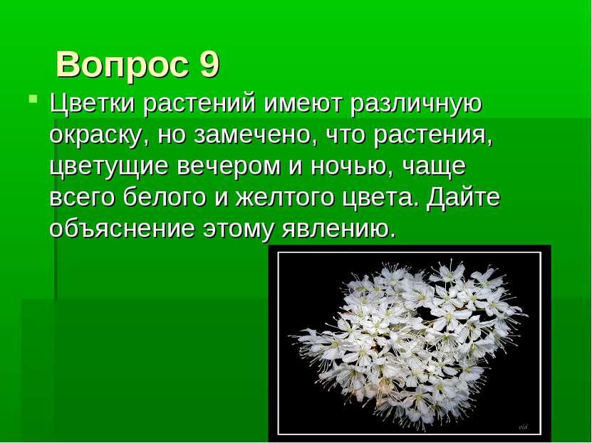 Вопрос 9 Цветки растений имеют различную окраску, но замечено, что растения, ...