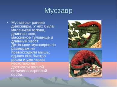 Мусзавр Мусзавры- ранние динозавры. У них была маленькая голова, длинная шея,...