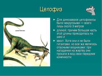 Целофиз Для динозавров целофизисы были некрупными — всего лишь около 3 метров...
