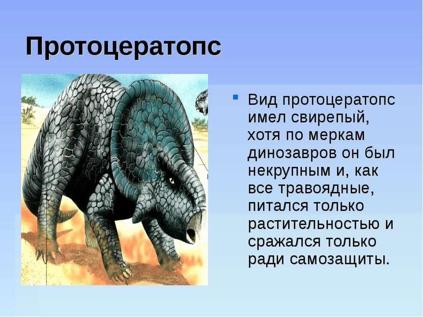 Протоцератопс Вид протоцератопс имел свирепый, хотя по меркам динозавров он б...