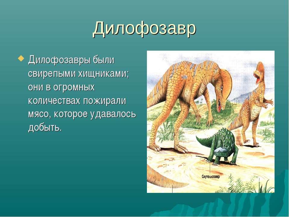 Дилофозавр Дилофозавры были свирепыми хищниками; они в огромных количествах п...