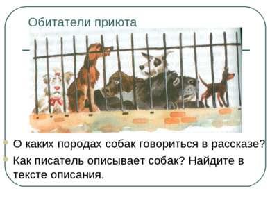 Обитатели приюта О каких породах собак говориться в рассказе? Как писатель оп...