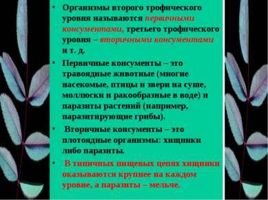 Организмы второго трофического уровня называются первичными консументами, тре...