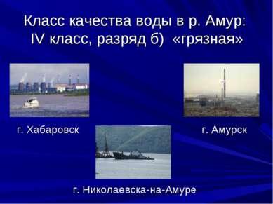 Класс качества воды в р. Амур: IV класс, разряд б) «грязная» г. Хабаровск г. ...