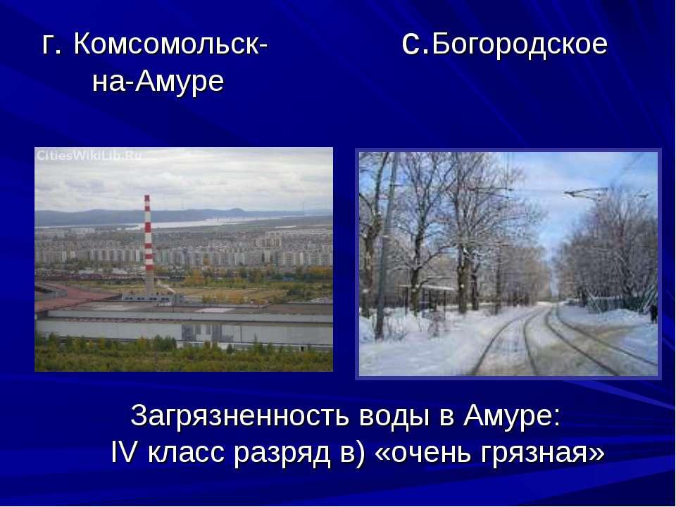 г. Комсомольск- с.Богородское на-Амуре Загрязненность воды в Амуре: IV класс ...