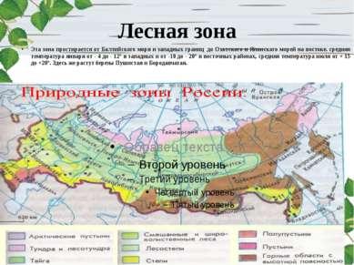 Лесная зона Эта зона простирается от Балтийского моря и западных границ до О...
