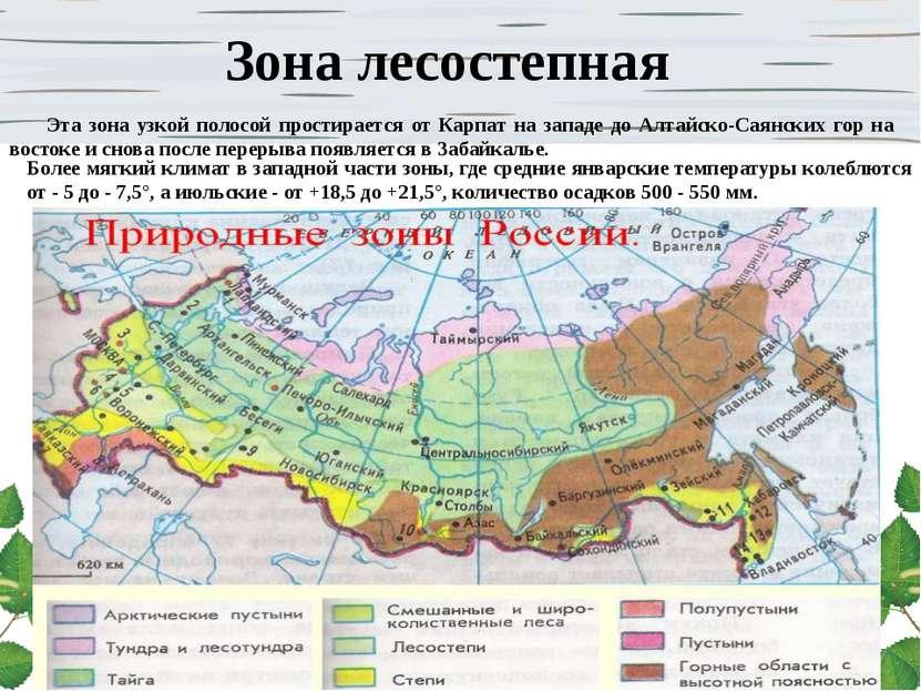 Зона лесостепная Эта зона узкой полосой простирается от Карпат на западе до А...