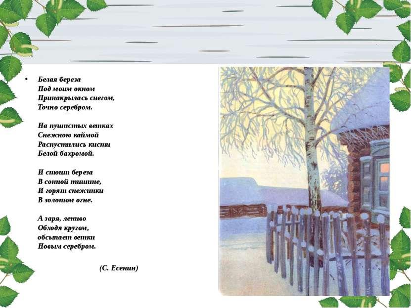 Белая береза Под моим окном Принакрылась снегом, Точно серебром. На пушистых ...