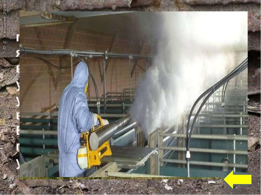 Газация — зона обитания грызунов просто обрабатывается ядовитыми газами, опас...