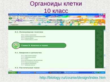 Органоиды клетки 10 класс http://biology.ru/course/design/index.htm