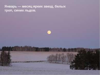 Январь — месяц ярких звезд, белых троп, синих льдов.
