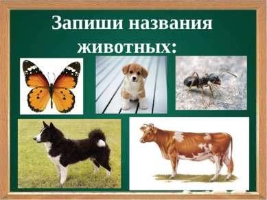 Запиши названия животных: