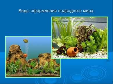 Виды оформления подводного мира.